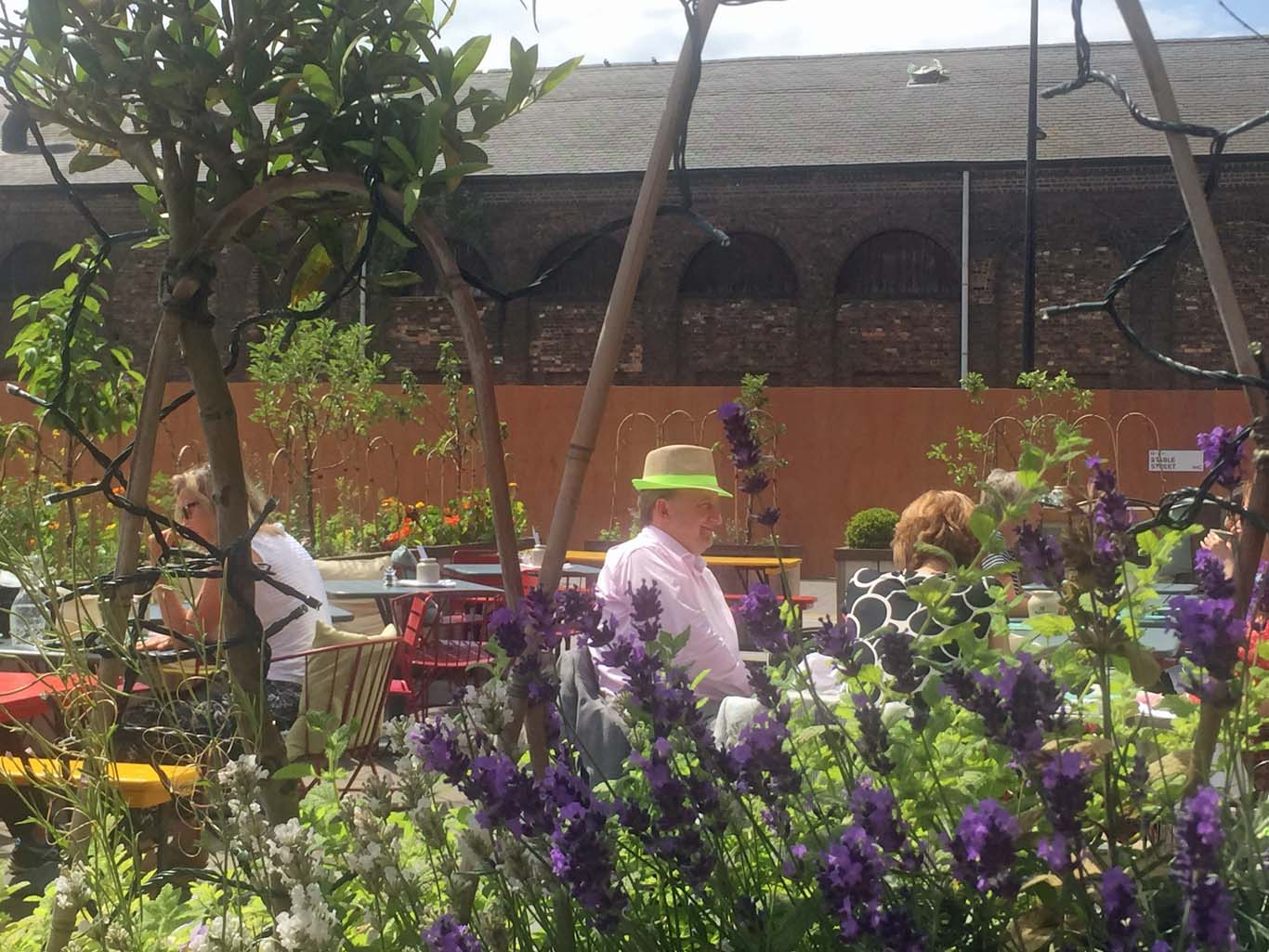 You'd never think you were in N1C. The herb-filled terrace. Photo: Tom Kihl