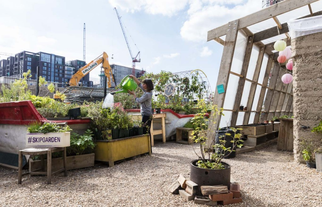 Tipping point: watering the produce at the Skip Garden, King's Cross. Photo: John Sturrock